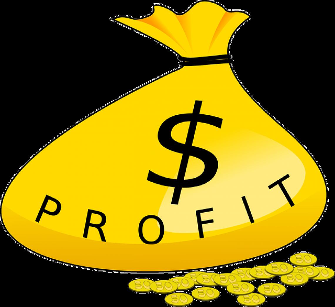 Zisk - podoby, druhy, druhy zisků, rozdělení zisků
