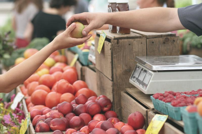 Potravinářský průkaz: co vědět a kde ho získat