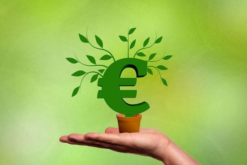 5 TOP: Jaké jsou nejlepší investice v době krize?