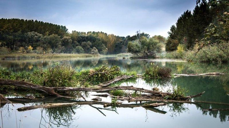 Kde ústí a pramení Dunaj - příroda řeka