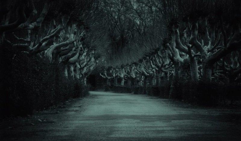Horor: strašidelná cesta, horory podle skutečné události.